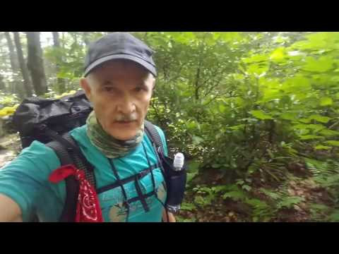 AT Section Hike-Dickey Gap to Damascus