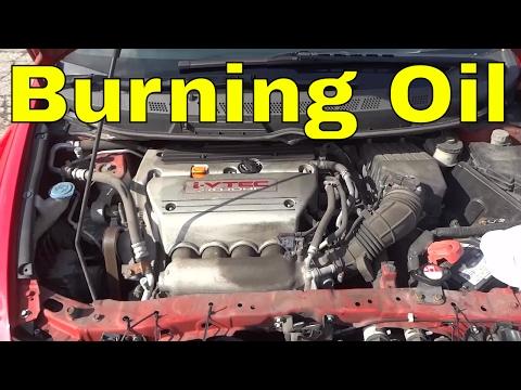 Honda Civic Si Burning A LOT Of Oil-K20 Engine