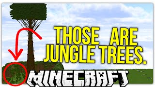What Lies at The Top of Minecraft s Tallest Tree?