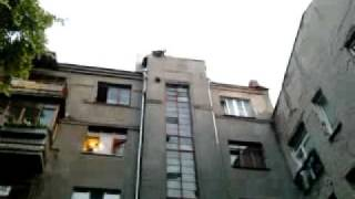 падение кошки с 5-го этажа.mp4
