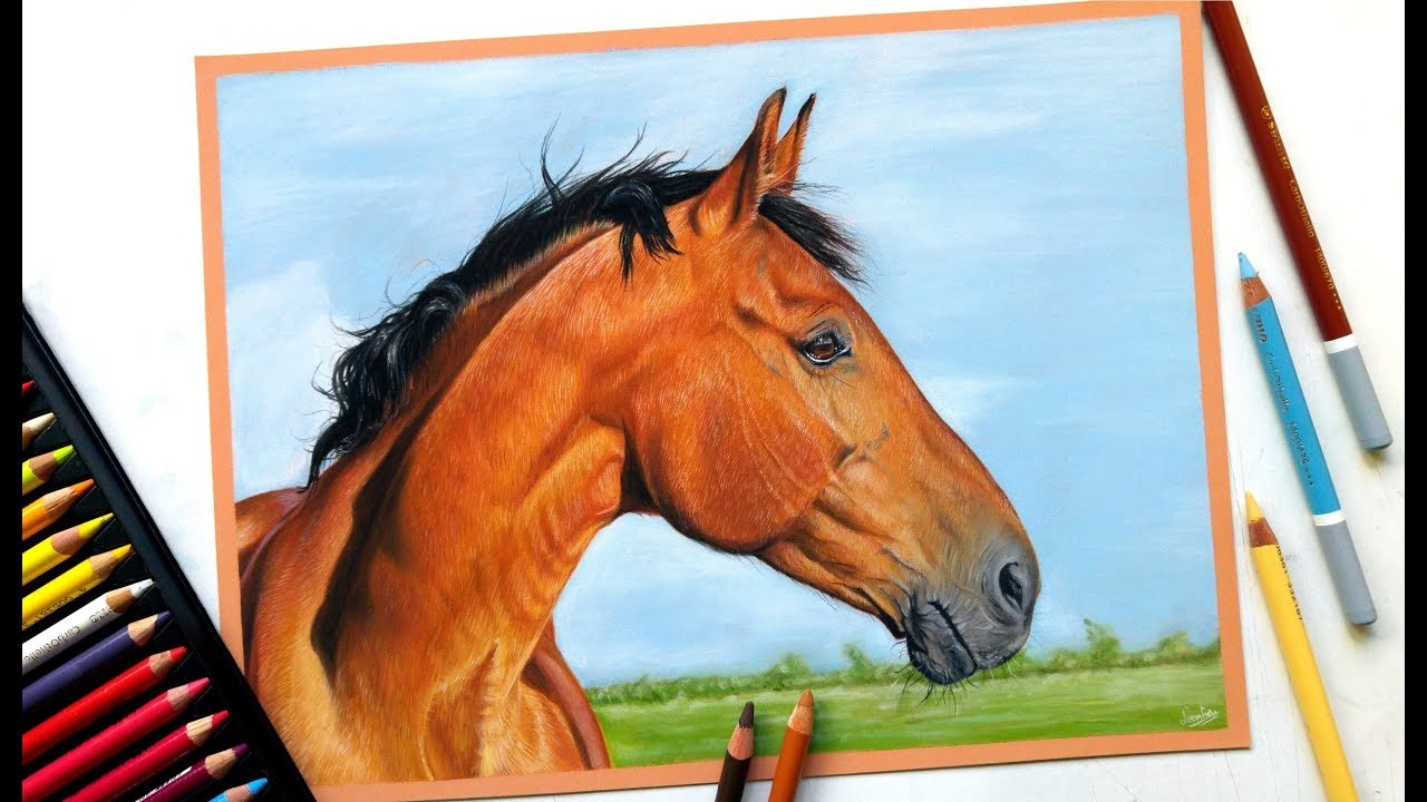 Drawing a realistic horse portrait with pastel pencils ...