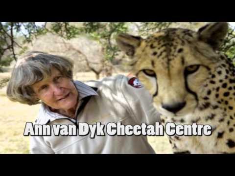 Top Pretoria Attractions you should visit