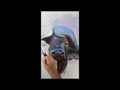 """Making Off da obra """"Morte Negra de África"""" - FRANCISCO CHARNECA - WILDLIFE ART"""