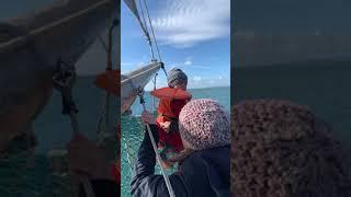 Simon whale rider