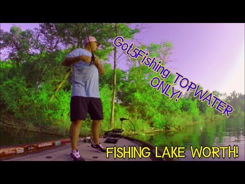 Fishing Lake Worth! A Bit Rusty! But Had Some Fun!