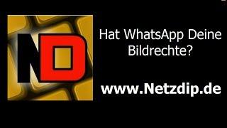 WhatsApp-AGB: Rechte für Bilder gesichert?