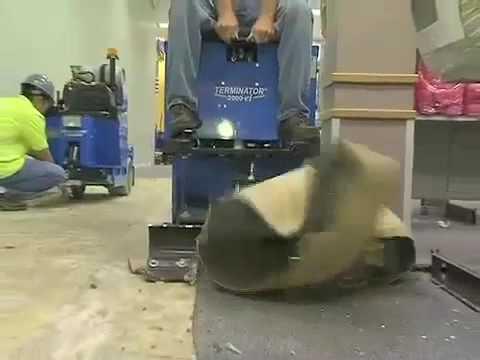 American Carpet One: Terminator carpet & flooring removal