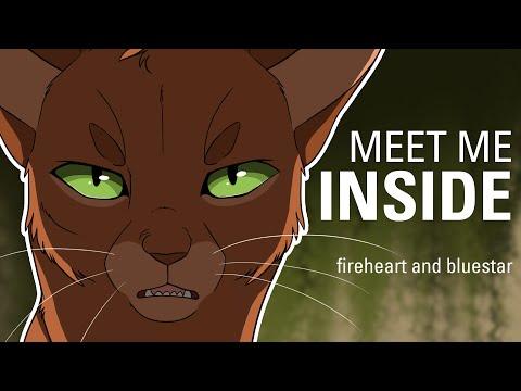 MEET ME INSIDE// Bluestar and Fireheart