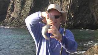 Shore-fishing Canaries; Pesca desde Costa en Canarias