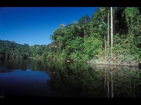 Bolivia   Rurrenabaque Gateway To The Amazone