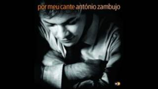 António Zambujo - « P'ra onde quel que me volte »