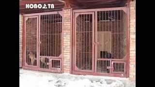 Новое жильё для служебных собак