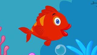 Kırmızı Balık Çocuk Şarkısı
