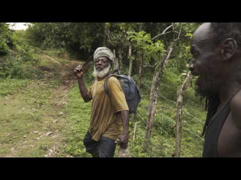 TRAIL HUNTER JAMAICA