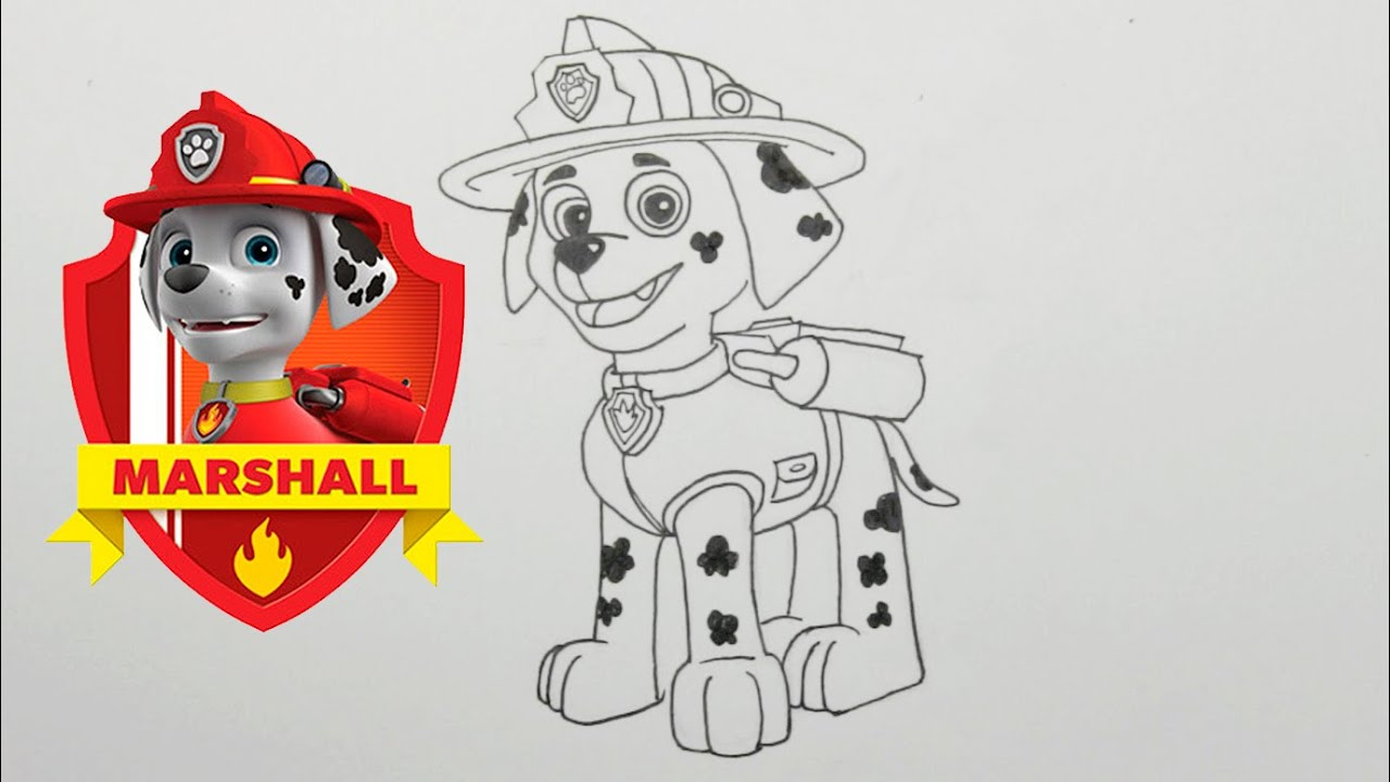 Cómo Dibujar A Marshall De La Patrulla Canina