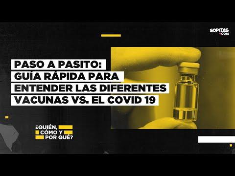 En YouTube: Guía rápida ¿cuáles son las mejores vacunas contra covid 19 y cómo podrían llegar a México?
