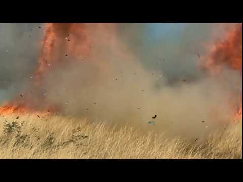 Tucson Happenings - Border Patrol Agent's Gender Reveal Party Burns 47,000 acres Around Tucson