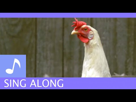 Air Bud TV: Animal Sing Alongs - Old MacDonald Had A Farm