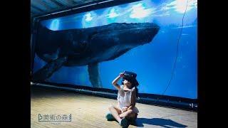 美術の森_ ocean x VR