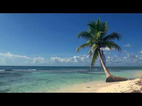 Vista de la playa para El Puerto de San Blas