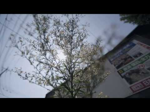 MOROHA「ハダ色の日々」MV