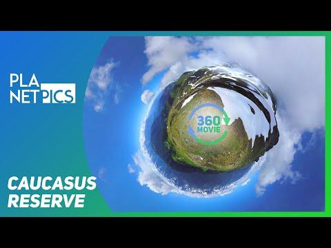 VR 360 | Caucasus Nature Reserve