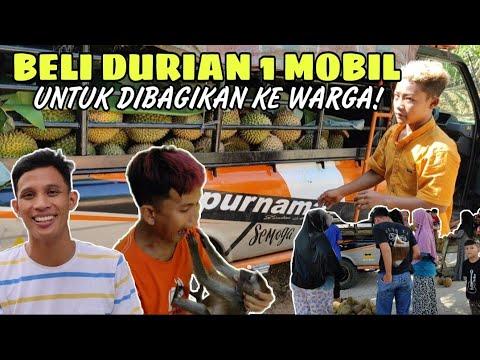 Download Preman Kecil Beli Durian 1 Mobil Untuk Dibagikan Ke Warga!