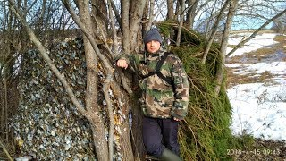 Подготовка охоты на тетерева на току весной