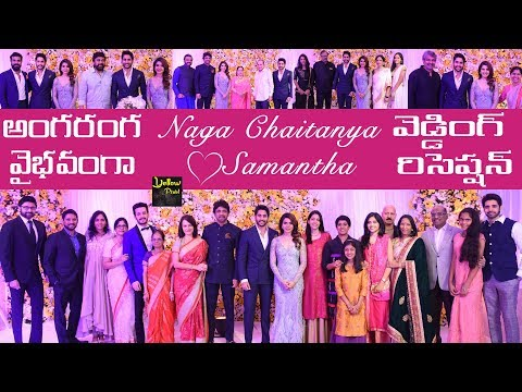 Celebs at Samantha and Naga Chaitanya Wedding Reception | Naga Chaitanya Samantha Rec Highlights