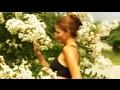 *'Natchez' White Crape Myrtle+White Flowering Trees+NY To FL+