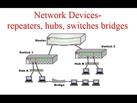 Network Devices repeaters, hubs, switches bridges  YouTube