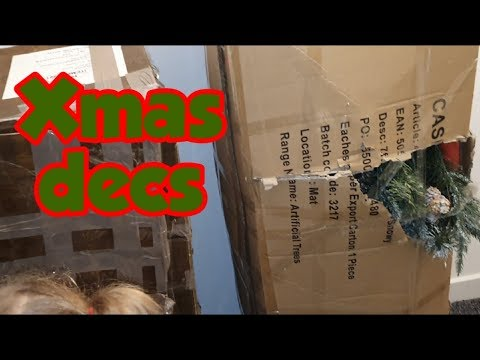Looking at what Christmas decorations we have? #stevesfamilyvlogs