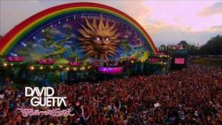 David Guetta - Tomorrowland 2010