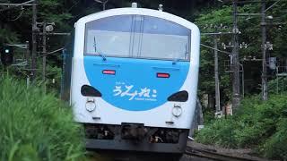 青い森鉄道 キハ48形8227D「リゾートうみねこ下北1号」 千曳~野辺地 2019年8月13日