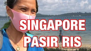 SINGAPORE PASIR RIS BEST FOR SMALL FISH #pasirrisbeach
