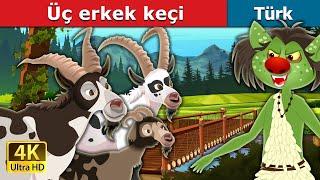 Üç erkek keçi   Three Billy Goats in Turkish   Turkish Fairy Tales