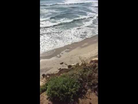 Beaches of Del mar California