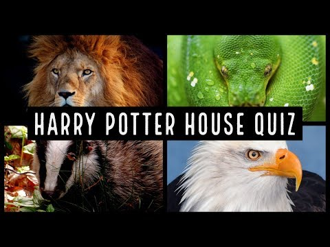 Harry Potter House Quiz | Which Hogwarts House Are You?