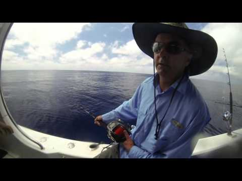 South Pacific Hunter kiwi trip downunder