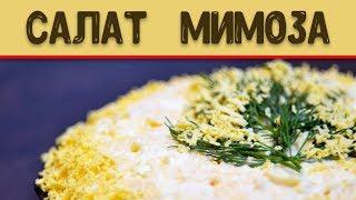 Салат Мимоза. Рецепт салата мимоза. Простые блюда.