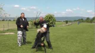 Rottweiler Puro Fadyla - Výcvik Uk-2