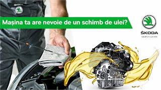 Mașina ta necesită un schimb de ulei?