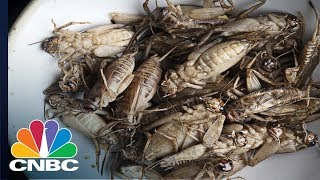 One Of Tech's Most Iconic CEOs Wants Us All To Eat Crickets | CNBC
