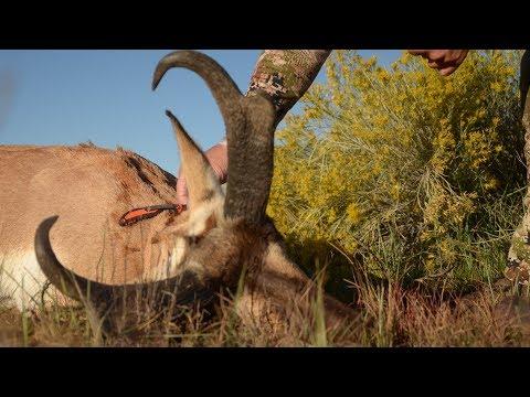 2016 Rifle Hunting New Mexico Antelope With Randy Newberg - Fresh Tracks Season 5