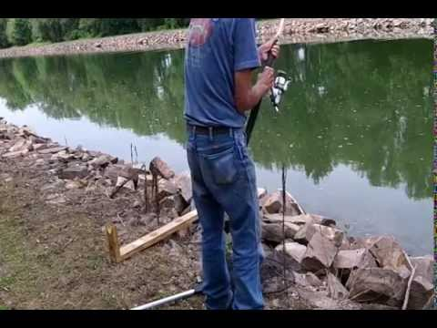 Abc How to use live & cut bait for Catfish