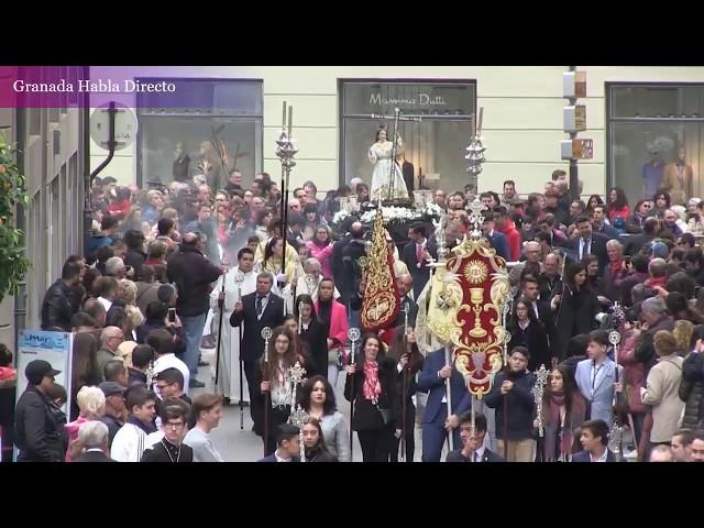 Domingo de Resurrección 2019 Granada / Resucitado