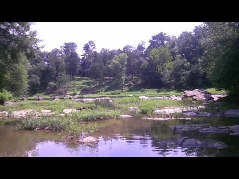 Creek off the Ouachita River Arkansas