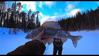 Разведка новой таёжной речки Уха на финской свече Рыбалка на хариуса 3 я часть