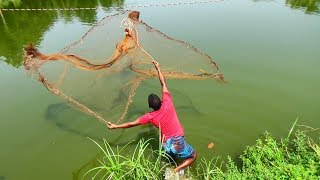Net Fishing | Catching Fish With Cast Net | Net Fishing in the village (Part-310)