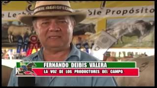 Perfil Agropecuario - Domingo 22-01-2017 Feria de Upata